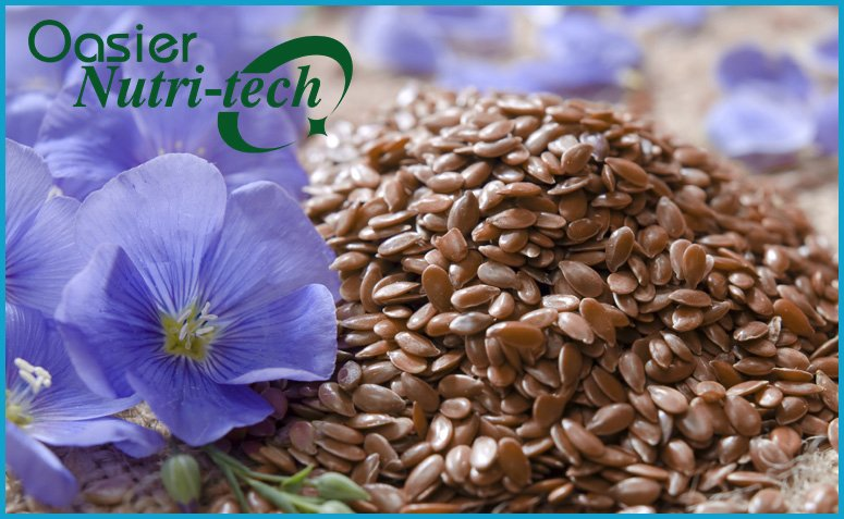 Flaxseed - Excellent Hypotensive Food
